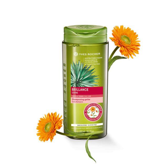 תמונת מוצר - שמפו לשיער מלא ברק מסדרת New Hair Care - מחיר המוצר 25.0000 ש״ח