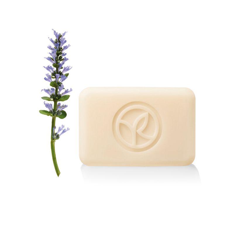תמונת מוצר - סבון מוצק מרגיע בניחוח לבנדר ופטל שחור מסדרת Plaisirs Nature 2 - מחיר המוצר 11.0000 ש״ח