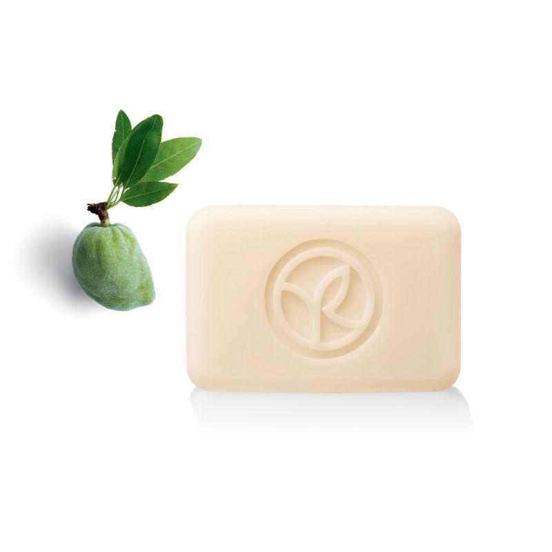 תמונת מוצר - סבון מוצק מרגיע בניחוח שקד ופריחת תפוז מסדרת Plaisirs Nature 2 - מחיר המוצר 11.0000 ש״ח