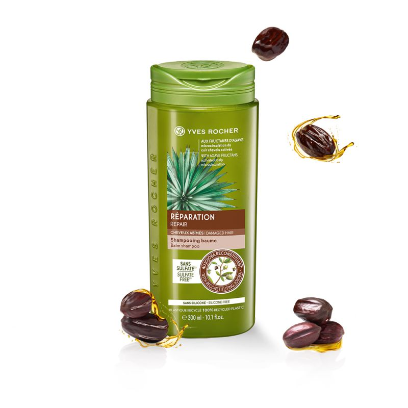 תמונת מוצר - שמפו משקם לשיער יבש ופגום מסדרת New Hair Care - מחיר המוצר 25.0000 ש״ח